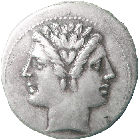 Janus Doubel head coin